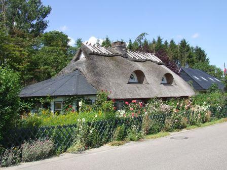 Deense boerderij met een heg vol wilde bloemen
