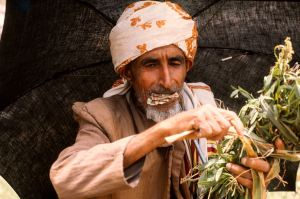 Jemen markt 1975